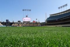 DodgersDSC02132